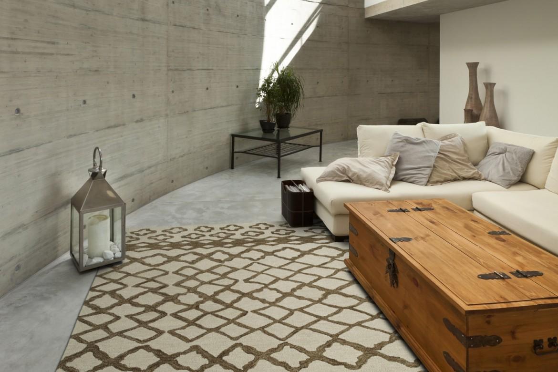 Choosing The Right Area Rug Carpet Plus Flooring Store